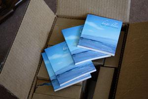 Huge Blue by Patrick M. Pilarski (Leaf Press, 2009)